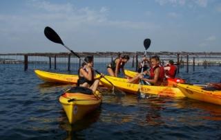 Sortie en kayak sur l'étang de Thau